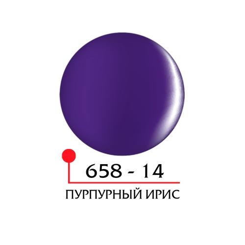 Цветной гель 4Д - пурпупный ирис