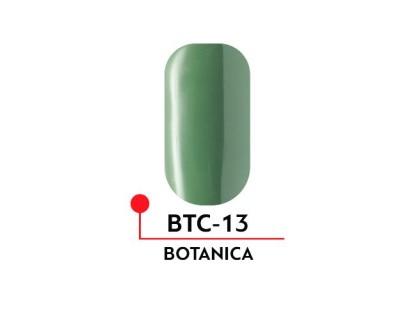 Гель-лак Formula Profi BOTANICA №13 (5 мл)