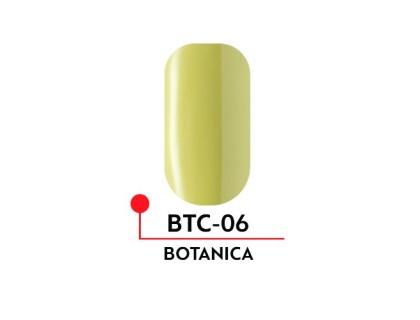 Гель-лак Formula Profi BOTANICA №06 (5 мл)