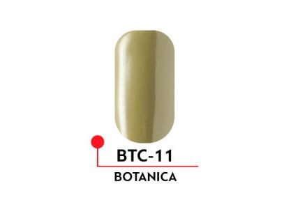 Гель-лак Formula Profi BOTANICA №11 (5 мл)