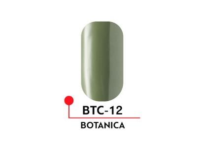 Гель-лак Formula Profi BOTANICA №12 (5 мл)