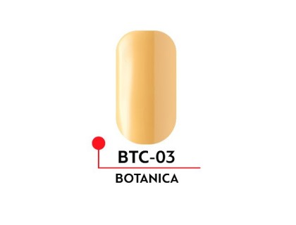 Гель-лак Formula Profi BOTANICA №03 (5 мл)