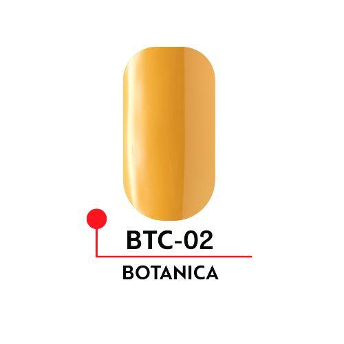 Гель-лак Formula Profi BOTANICA №02 (5 мл)
